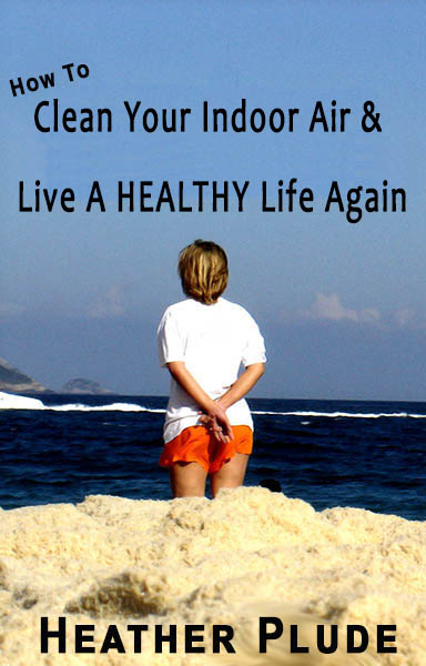 clean indoor air book